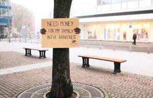 arbre mendiant